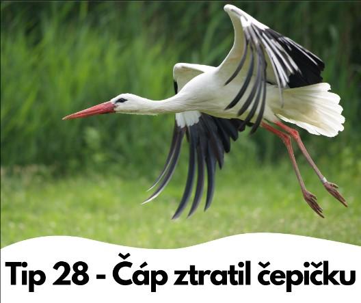 Tip 28 - Čáp ztratil čepičku